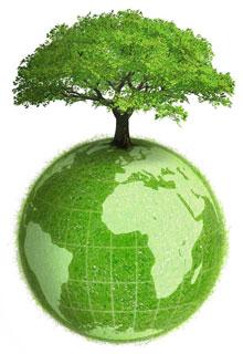 консультация юриста эколога